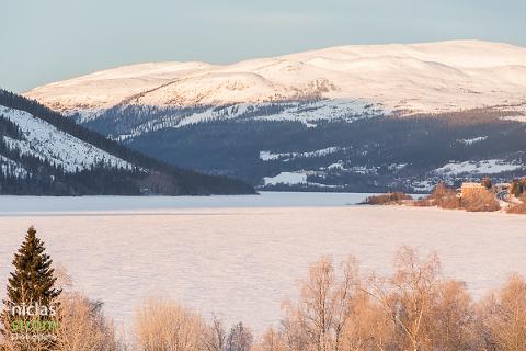 Bilder, nyheter och webbkameror från Åre på www.arelive.se