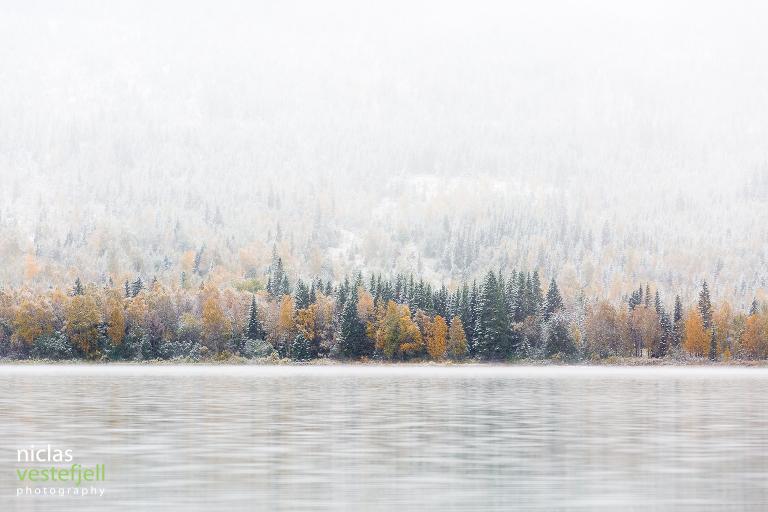 Niclas Vestefjell är fotograf i Åre
