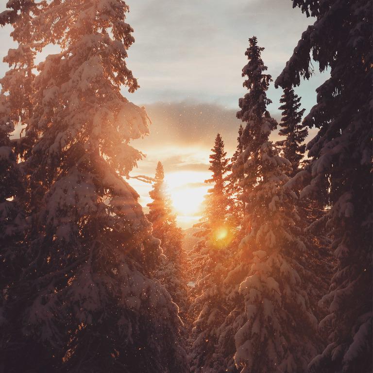 12_25_fotograf_i_Are_Niclas_Vestefjell_bilder_foto_are_jamtland_fotoblogg_arebilder1