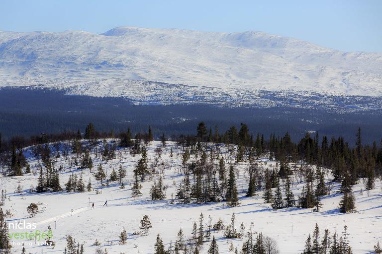 Foto från Vålådalen 11 mars. Fotograf Niclas Vestefjell från Åre