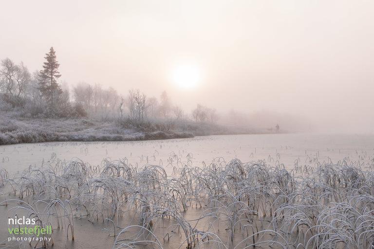 Foto: Fotograf i Åre, Niclas Vestefjell
