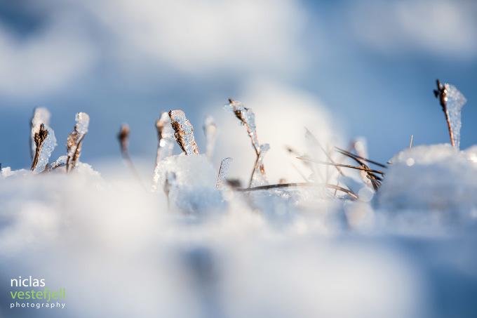 En bild från Åre av fotografen Niclas Vestefjell