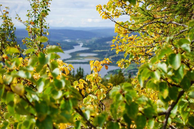 Bild från fotograf Niclas Vestefjell i Åre
