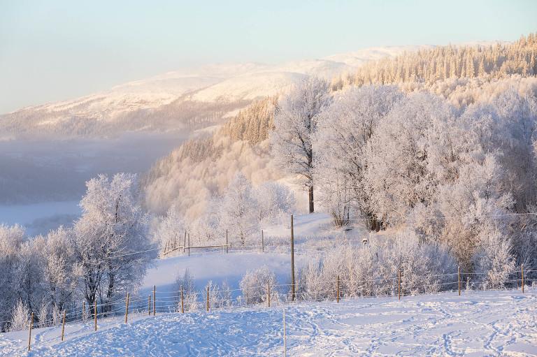 En Årebild av Niclas Vestefjell fotograf i Åre