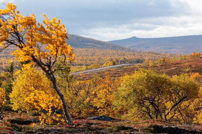 Fotograf i Åre Niclas Vestefjell
