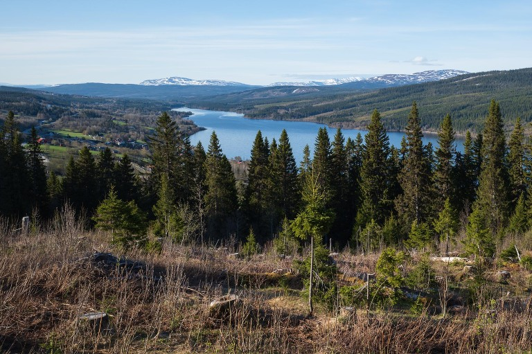 Fotograf Åre Niclas Vestefjell